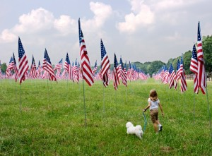 Field of Flags at Kennesaw Mountain 9-11 Anniversary